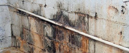 Lekkage op muur in de kelder
